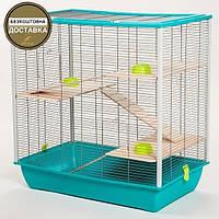 Клітка Inter-Zoo Frodo G186 для дегу, щурів, шиншил, тхорів, (78*48*80 див.)
