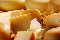 Закваска для Твердого Сыра Росийский от 6л молока