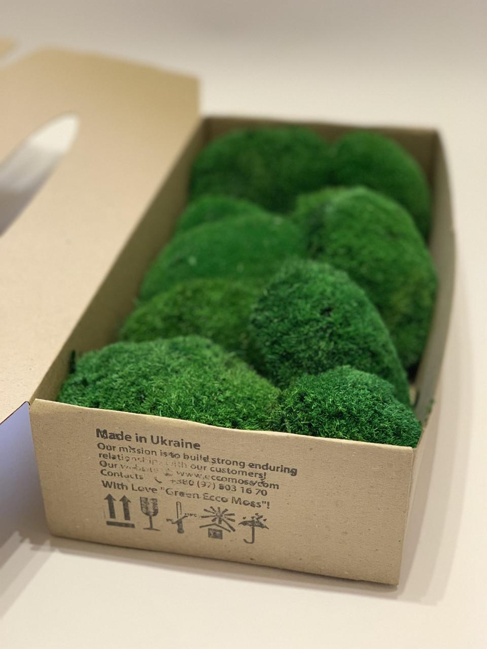 Стабілізований мох Green Ecco Moss купина зелений 0,5 кг.