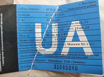 """Кукурудза """" ДБ Хотин"""" ФАО 280, 1 кг, фото 2"""