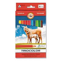 """Карандаши """"K-I-N"""" 3144 Triocolor Jumbo Horses 24цв"""