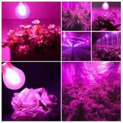 Освещение растений в теплицах и оранжереях