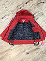 Весенняя куртка на девочку красного цвета Джуди, фото 3