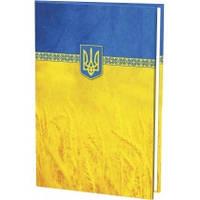 """Папка А4 адресная """"Economix"""" E30901-05 желто-гол."""