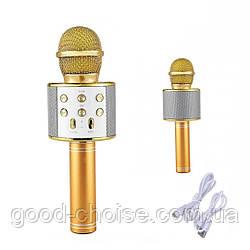 Детский микрофон с караоке DM Karaoke WS-858 / Беспроводной караоке микрофон