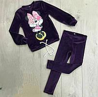 Велюровий костюмчик для дівчаток  на ріст:116 см