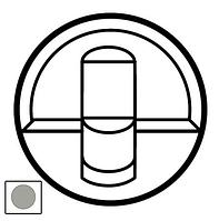 Лицевая панель компьютерной розетки RJ45 Celiane титан