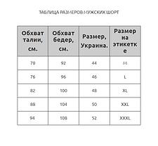 Мужские короткие шорты Z.Five 8914 бирюзовые 44 46 48 50 52 размер, фото 3