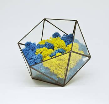 Флорариум кашпо Моссариум со стабилизированным мхом икосаэдр микс синий с желтым 7 см