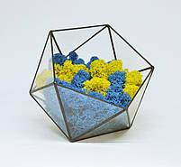 Флораріум кашпо Моссаріум зі стабілізованим мохом ікосаедр мікс синій з жовтим 7 см, фото 2
