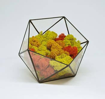 Флораріум кашпо Моссаріум зі стабілізованим мохом ікосаедр мікс оранжевий з жовтим 15 см
