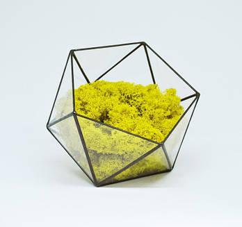 Флораріум кашпо Моссаріум зі стабілізованим мохом ікосаедр жовтий 10 см