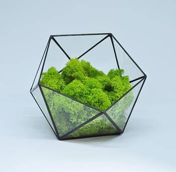 Флораріум кашпо Моссаріум зі стабілізованим мохом ікосаедр зелений 10 см