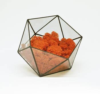 Флораріум кашпо Моссаріум зі стабілізованим мохом ікосаедр помаранчевий 10 см