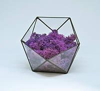 Флорариум кашпо Моссариум со стабилизированным мхом икосаэдр фиолетовый 7 см, фото 2
