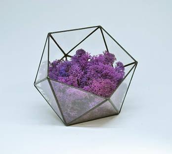 Флорариум кашпо Моссариум со стабилизированным мхом икосаэдр фиолетовый 15 см