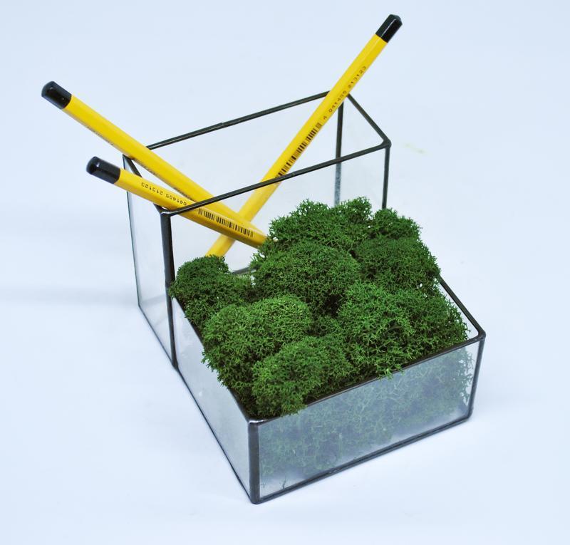 Флораріум кашпо Моссаріум органайзер зі стабілізованим мохом зелений