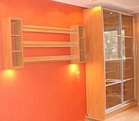 Шкаф-купе для книг с полочкой