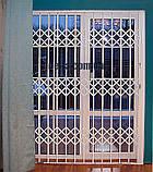 Решетки раздвижные на двери Шир.1450*Выс2100мм для дома, фото 8
