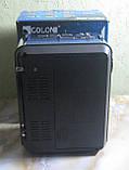 Радіо акумуляторне з USB, SD та ліхтариком Golon RX-9122 (синє), фото 4