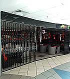 Решетки раздвижные на двери Шир.1365*Выс2100мм для банков, фото 2