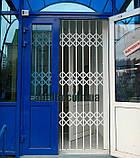 Решетки раздвижные на двери Шир.1365*Выс2100мм для банков, фото 8