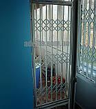 Решетки раздвижные на двери Шир.1365*Выс2100мм для банков, фото 10