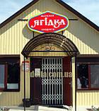 Раздвижная решетка на дверь Шир.4000*Выс2200мм для магазина, фото 6
