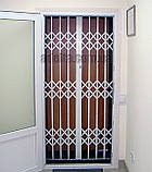 Раздвижная решетка на дверь Шир.1255*Выс2200мм для офиса, фото 3