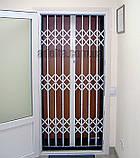 Раздвижная решетка на дверь Шир.2180*Выс2800мм для салона красоты, фото 3
