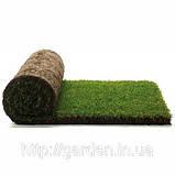 Готовый газон купить. Продажа рулонного газона начнется после 25 апреля 2016 года!!!, фото 2