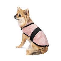 Попона, одежда для собак Бланкет