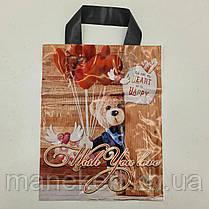 Пакет с петлевой ручкой 25*30 Мишка Рендпако (25 шт), фото 3