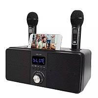 Портативная Караоке система с двумя микрофонами SDRD SD-309