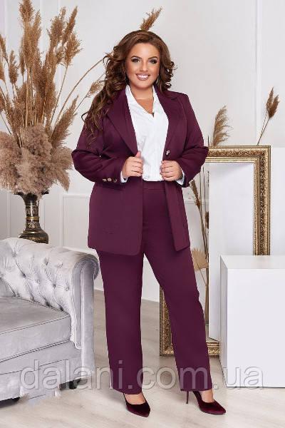 Женский деловой бордовый брючный костюм с пиджаком батал