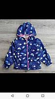 Куртка ветровка для девочки 1-4 лет розового, персикового, синего цвета с капюшоном оптом, фото 1