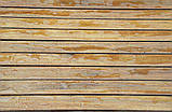 Strong. Террасное масло, масло для террас, масло для дерева, фото 3