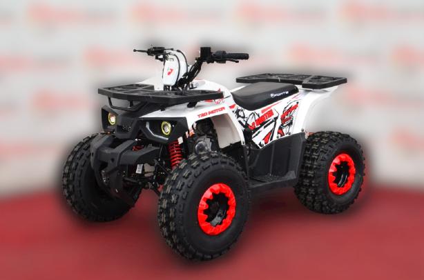 Квадроцикл Forte Hunter 125 NEW
