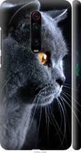 """Чохол на Xiaomi Mi 9T Pro Красивий кіт """"3038c-1698-2448"""""""