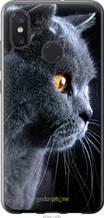 """Чехол на Xiaomi Mi8 Красивый кот """"3038u-1499-2448"""""""