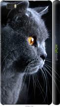 "Чохол на Huawei Ascend P8 Lite Красивий кіт ""3038c-126-2448"""