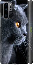 """Чохол на Huawei P30 Pro Красивий кіт """"3038c-1621-2448"""""""