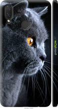 """Чохол на Huawei P Smart Plus Красивий кіт """"3038c-1555-2448"""""""