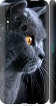 """Чохол на Huawei Y9 Prime 2019 Красивий кіт """"3038c-1736-2448"""""""