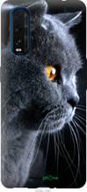 "Чехол на Oppo Find X2 Красивый кот ""3038u-1891-2448"""