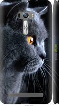 "Чохол на Asus ZenFone Selfie ZD551KL Красивий кіт ""3038c-116-2448"""