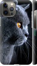 "Чехол на Apple iPhone 12 Pro Max Красивый кот ""3038c-2054-2448"""