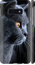 "Чохол на Samsung Galaxy S10e Красивий кіт ""3038c-1646-2448"""