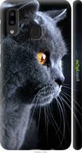 """Чехол на Samsung Galaxy A20e A202F Красивый кот """"3038c-1709-2448"""""""