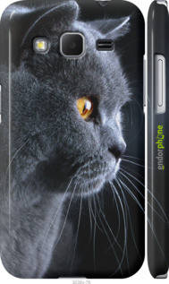 "Чехол на Samsung Galaxy Core Prime VE G361H Красивый кот ""3038c-211-2448"""